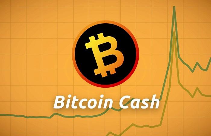 Rise in Bitcoin Cash